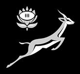 Springboks